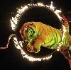 Цирки в Краснослободске